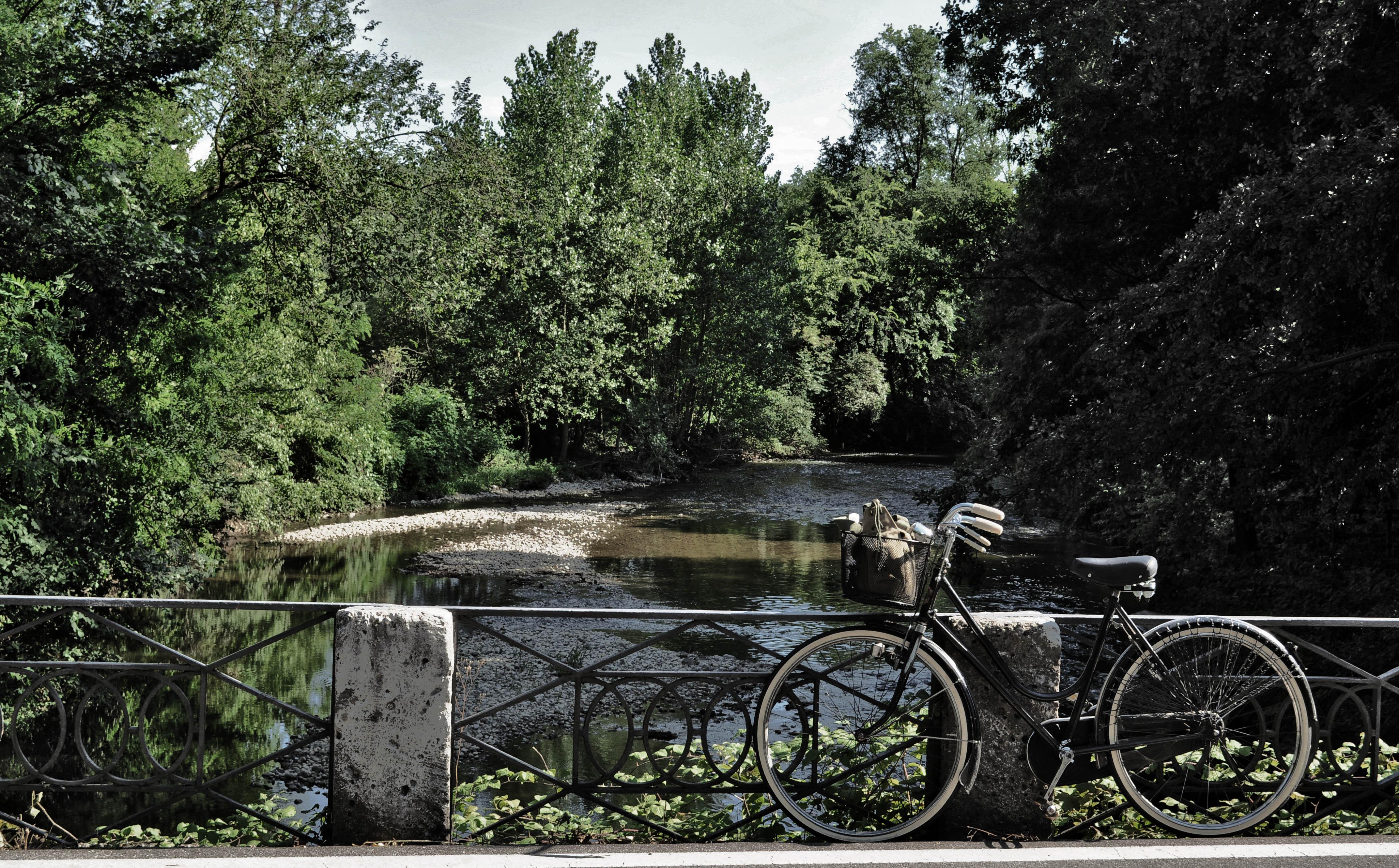 Noleggio bici Parco di Monza 2