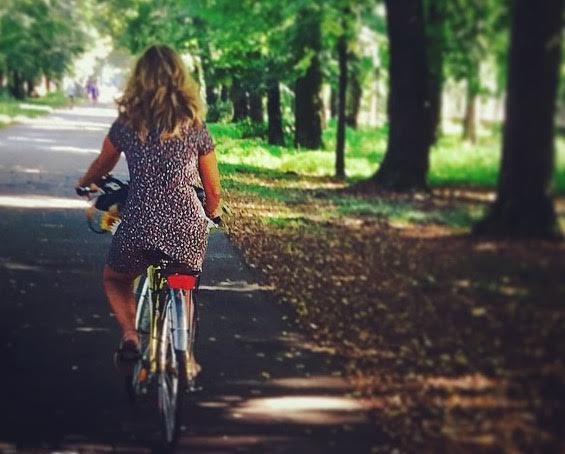 Noleggio bici parco di Monza 3