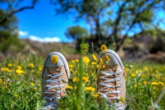 Primavera e benessere al Parco di Monza 5